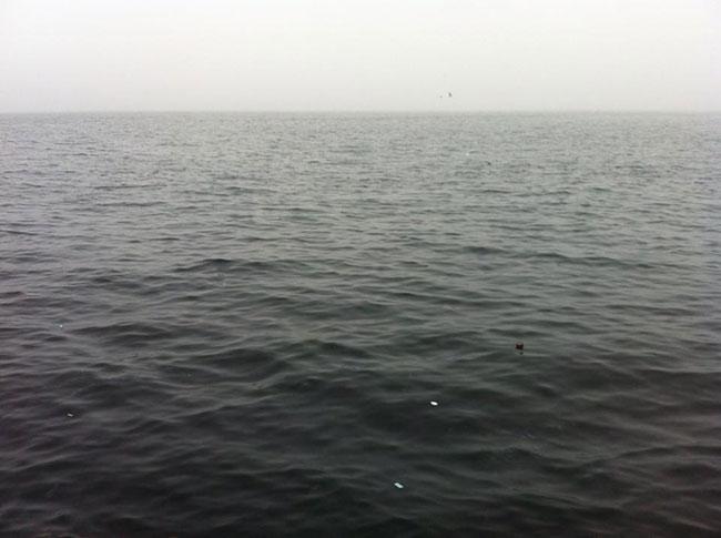 Ocean-small